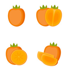 persimmon whole fruit half slice vector image