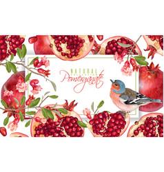Pomegranate branch bird banner vector