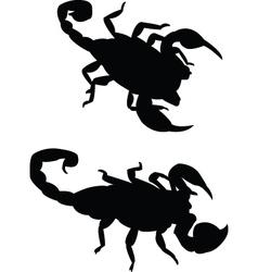 scorpions vector image