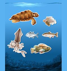 Set of different animals in ocean vector