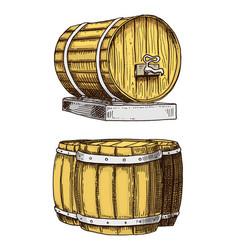 wine or rum beer classical wooden barrels vector image