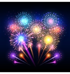 Festive background poster with firework vector image vector image