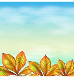 A blue sky and the leafy plants vector