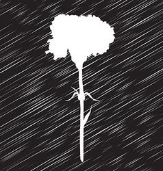carnation stencil vector image