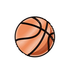 drawing basketball ball sport competition element vector image