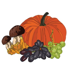 Gifts of autumn vector