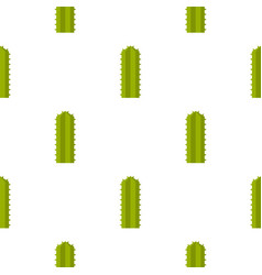Green cereus candicans cactus pattern seamless vector