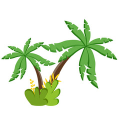 palm tree icon tropical plant coconut vector image