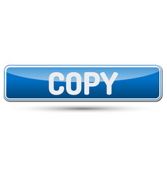 copy - abstract beautiful button with text vector image