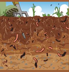 soil vector image vector image