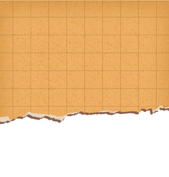 Background paper texture for restaurant cafe bar vector image