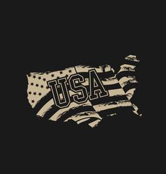 america grunge flag design vector image