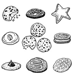 Hand-drawn cookies vector