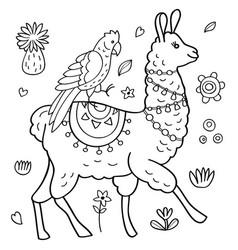 Llama and parrot vector