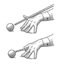 Male hand in a shirt is aimed cue the ball vector
