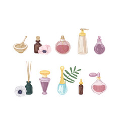 Set perfume products in glass bottles and vector