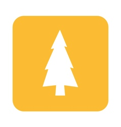 Spruce icon vector