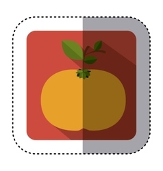 Sticker of square button with colorful tangerine vector