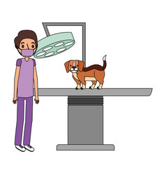 veterinary clinic petcare vector image