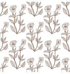 Viola tricolor pattern in hand drawn style vector