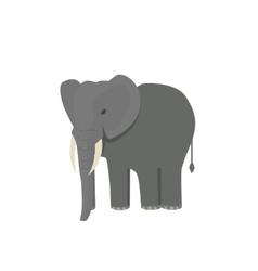Cute little african elephant isolated on white vector image