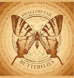 beige banner with a swallowtail butterfly vector image