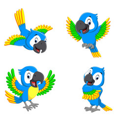 Collection blue parrots with happy face vector