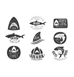 dangerous shark surf club set black and white vector image