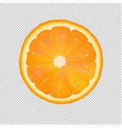Orange slice with transparent background vector
