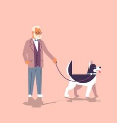 senior man walking with husky dog grandfather with vector image