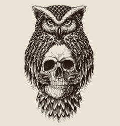 elaborate drawing of owl holding skull vector image