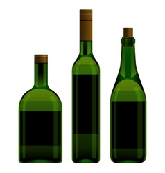 Green bottles different size vector