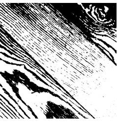 grunge wooden background vector image