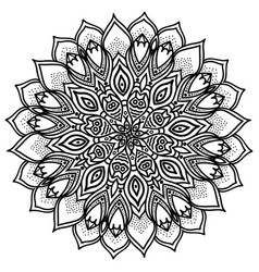 mandala highly detailed ethnic vector image