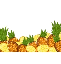 Pineapple composition Isolated vector