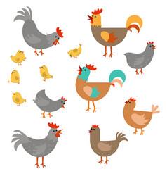 Set of cute chickens set of cute chickens vector