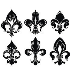 set of royal lily vector image