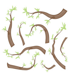 set of stylized branches with leaves isolated on vector image