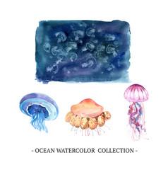 Set watercolor design jellyfish on white vector