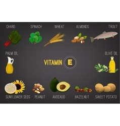 Vitamin E in Food vector
