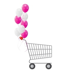 Empty Supermarket Shopping Cart Icon Isolated on vector image vector image