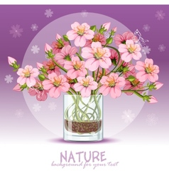 Background with cherry blossom in a glass vector