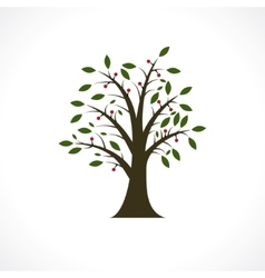 berry tree vector image