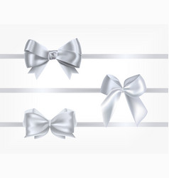 collection of silk silver ribbons decorated with vector image