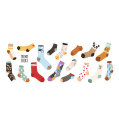 collection stylish cotton and woolen socks with vector image