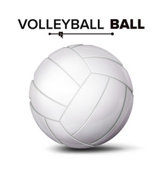 realistic volleyball ball classic round vector image