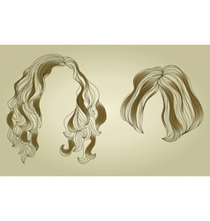 hair styling for woman vector image vector image