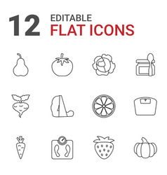 12 diet icons vector