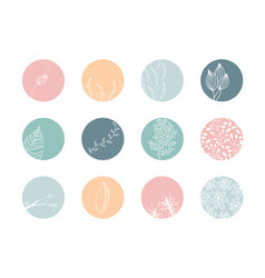 Highlight cover set floral botanical icons vector