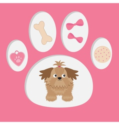 Shih Tzu and dogs stuff in the paw print vector